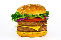 FITBOX burger