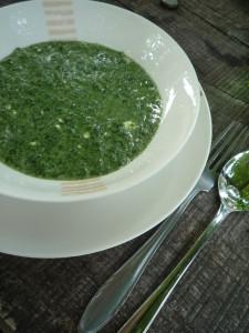 polievka so žihlavy
